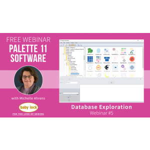 Palette 11 Webinar Database Exploration - June 2020