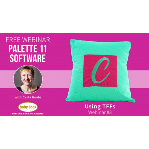 Palette 11 Webinar #3 - Using TTFs in Palette 11