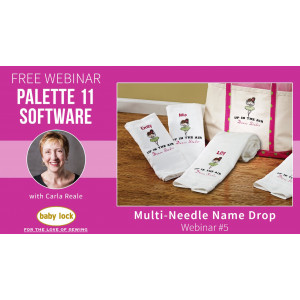 Palette 11 Webinar #5 - Multi-Needle Name Drop