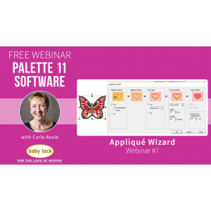 Palette 11 Webinar #7 - Applique Wizard