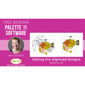 Palette 11 Webinar #9 - Editing Pre-Digitized Designs