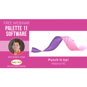Palette 11 Webinar Punch it Up! - March 2020