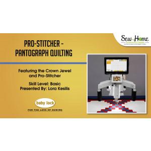 Pro-Stitcher Pantograph Quilting